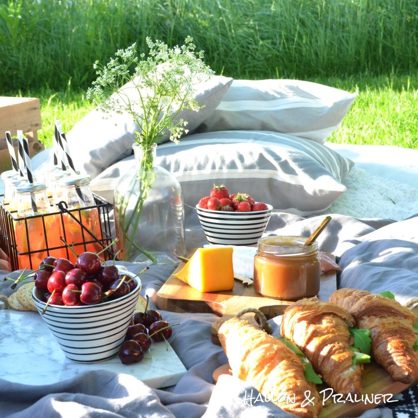picknick10