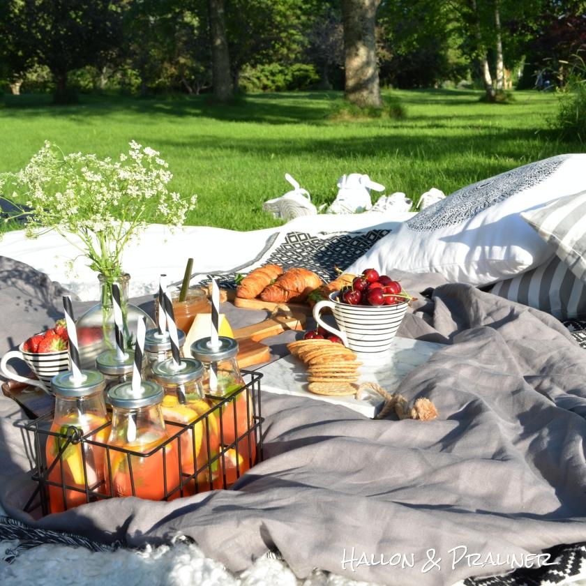 picknick7