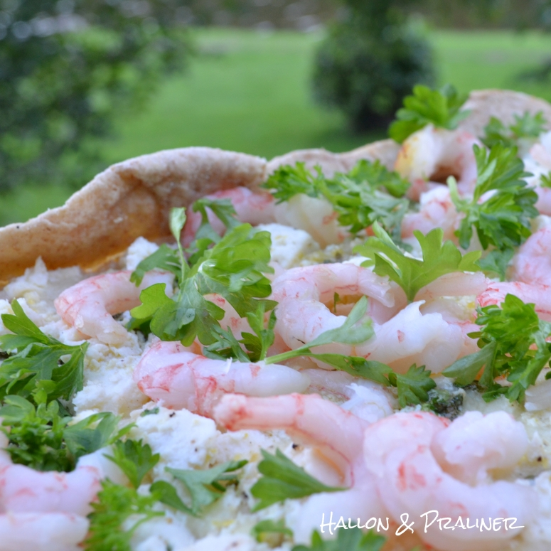 Grillpizza11